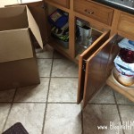 Essentials Needed During a Moving Situation