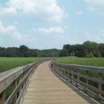 Vacation Options in Northeast Ohio : Islands, Beaches & Metroparks