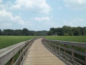 bridge rfrom