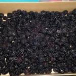Easy Blackberry Cobbler #Recipe