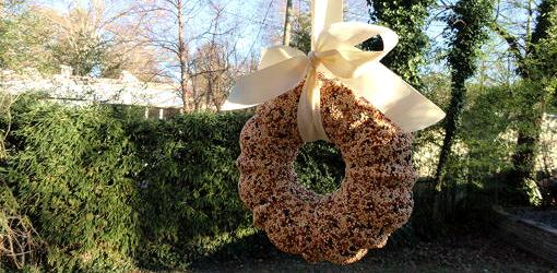 how-make-birdseed-wreath-1